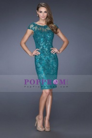http://www.poppromhouse.com/2015-new-arrival-bateau-evening-dresses-sheath-with-applique-lace-7151362