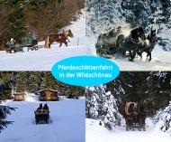 Weihnachtliche Romantische Pferdeschlittenfahrt in der Wildschönau für 4 Personen mit Glühwein und warmen Decken, für 99,00 € statt 199,00 €