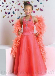 A line Halter Tulle Embroidery Wholesale Cheapest Pageant Dress